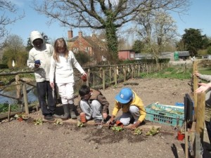 Kench Hill gardening activity